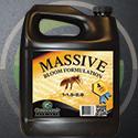 125x125-Massive-Ad